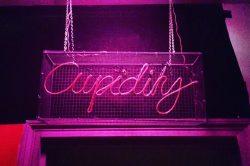 cupidity-neon-lights