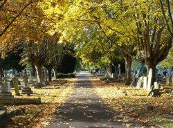 Putney Vale in Autumn