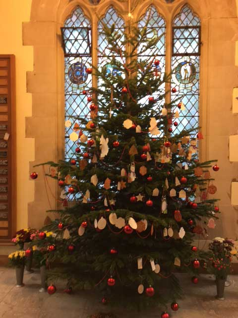 ... Christmas Tree at Putney Vale