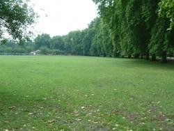 BA Grass looking Sth