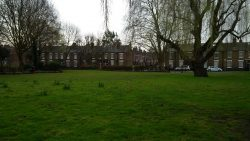 Latchmere Rec newly grassed